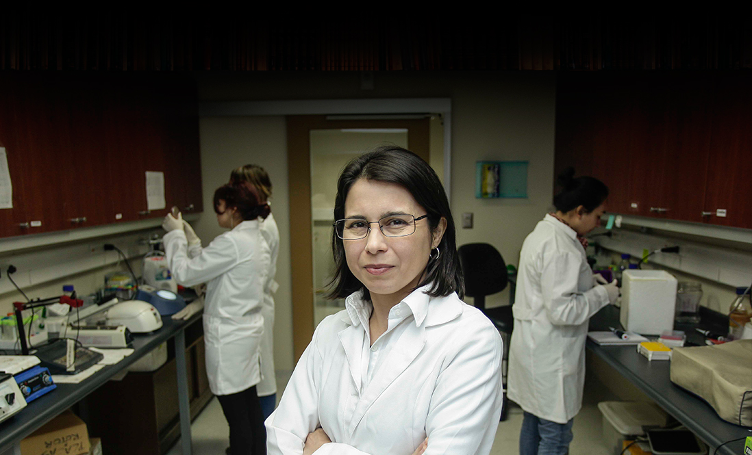 Health, aquaculture, communications, mining or viticulture: women join in patenting innovations in Chile.